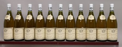 11 bouteilles CHASSAGNE MONTRACHET