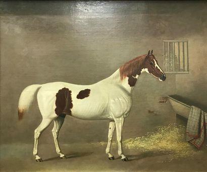 G. JACKSON (XIXème siècle) Cheval à l'écurie...