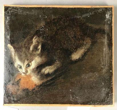 *Ecole du XIXe siècle Le chat Toile (res...
