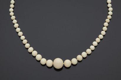 Collier en chute de perles de corail blanc*(scleratinia...