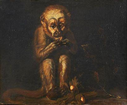 Attribué à Ferdinand van Kessel Le singe...