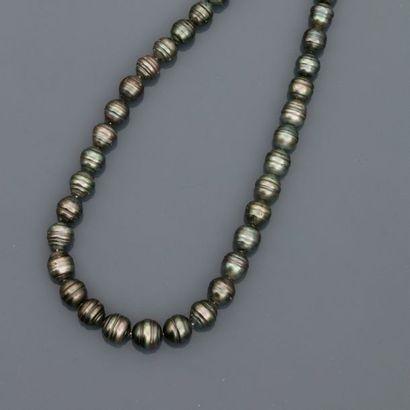 Collier de perles de Tahiti baroques en légère...