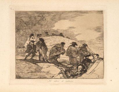Francisco de GOYA (1746 -1828)  No Saben...
