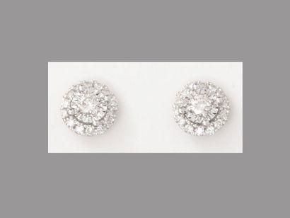 Boutons d'oreilles en or gris, 750 MM, recouverts...