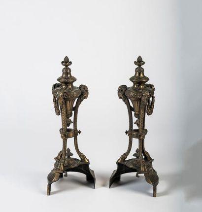 Paire de chenets  en bronze doré en forme...