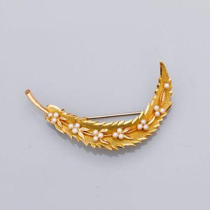 Jolie broche « Feuille » en or jaune, 750...
