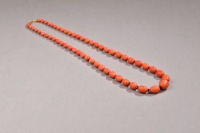 Collier en perles de corail oblongues en...