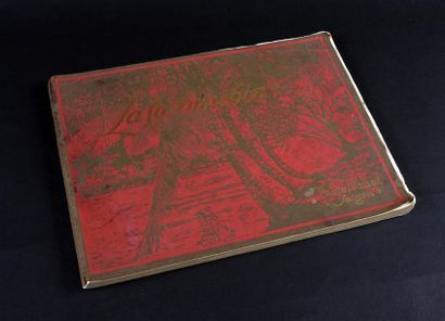 1925  LA COCHINCHINE,  Album général illustré...