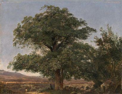 Attribué à Alexandre CALAME (1810-1864) Le...