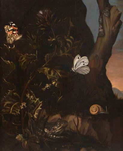 Attribué à Matthias WITHOOS (1627-1703) Paysage...