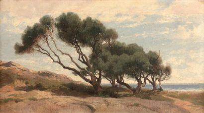 Alexandre CALAME (1810-1864) Paysage aux...