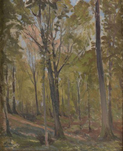 Pierre DELAUNAY (1870-1915)  Bois de la Trémellerie,...