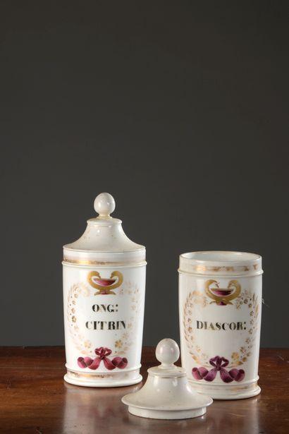 Deux pots à pharmacie en porcelaine polychrome,...