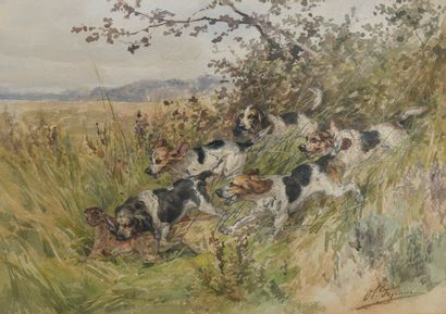 Charles Olivier de PENNE (1831-1897)  Lièvre...