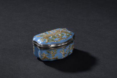 Boîte en émail bleu et rehauts d'or, montée en argent, Paris, 1738-1744  De forme...