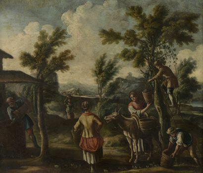 École d'ITALIE du NORD vers 1700  Les vendanges...