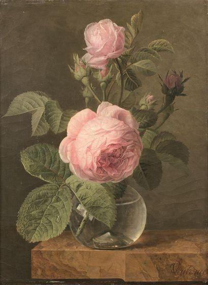 Jan Frans Van DAEL (1764-1840)  Roses dans...