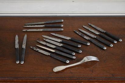 THEURIER Paris  18 couteaux en acier, manche...