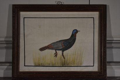 Ecole française de la fin du XIXe siècle  Oiseaux  Deux huiles sur soie formant...