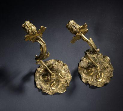 Paire d'appliques en bronze ciselé et doré...