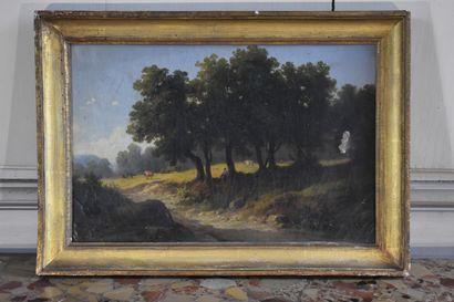 Henry VAN DER BURCH (?-1854) (?)  Paysage...
