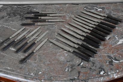 Douze couteaux lame acier et manche ébène...