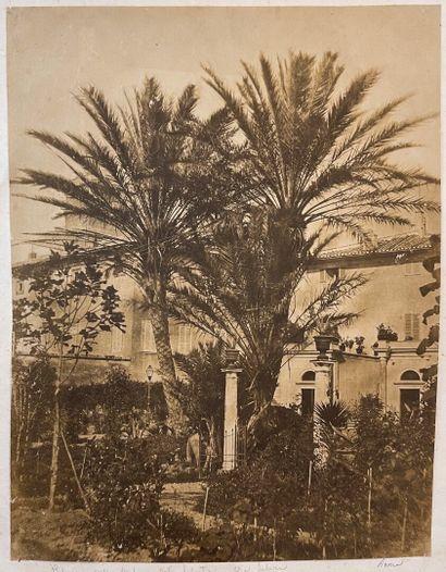 Giacomo Caneva (1813-1865, atttr.)  Palmiers,...