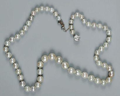 Collier composé de quarante-neuf perles fines...