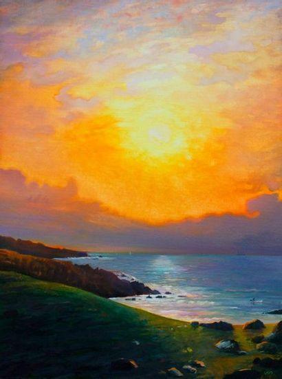 Paul NATTER (1972)  La côte à Doëlan  Huile...