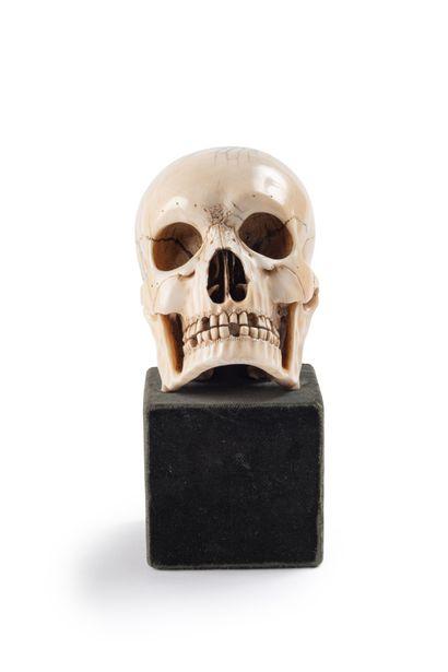 Memento Mori en Ivoire,  Crâne finement exécuté notamment au niveau de la dentition...