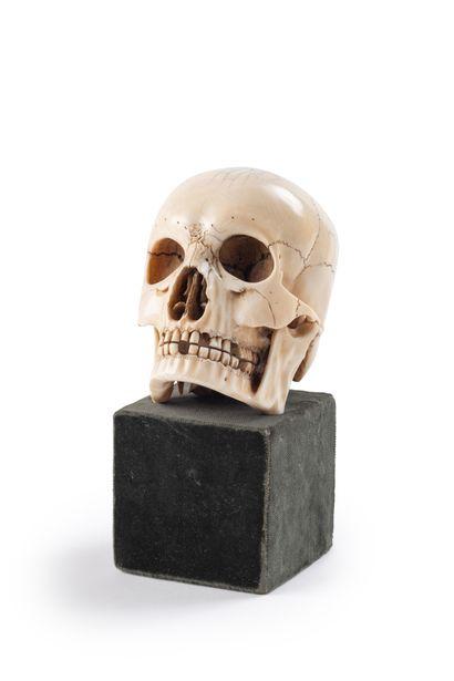 Memento Mori en Ivoire,  Crâne finement exécuté...