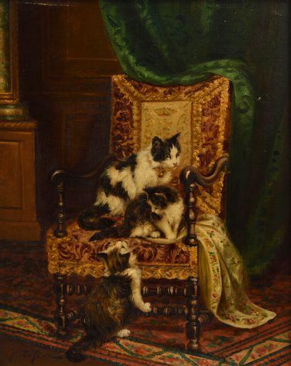 Jules LE ROY  (1853 - 1925)  Chats jouant...