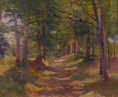 Paul VOGLER (1852-1904). Sous-bois. Huile...