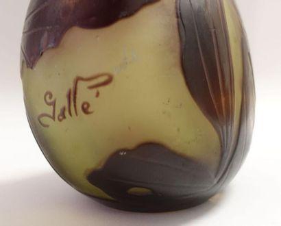 GALLÉ. Soliflore à col conique sur base ovoïde aplatie. Épreuve en verre doublé...
