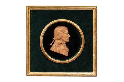 Portrait de profil d'un jeune homme, en cire, couleur cuivre patiné, en demi-ronde bosse ; il porte les cheveux, longs, noués avec un catogan, habit civil laissant apparaître la cravate ; cadre carré, en bois à vue ronde, recouvert, sur le fond, de velour
