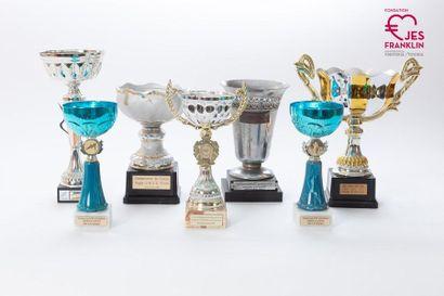 Lot de 14 coupes de récompenses sportives attribuées à des équipes franklinoises