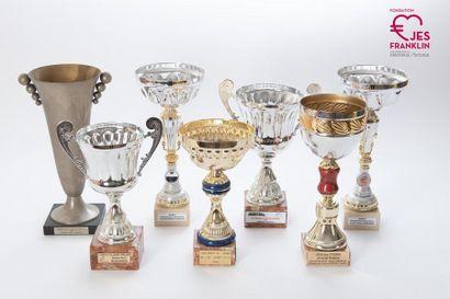 Lot de 14 coupes de récompenses sportives attribuées à des équipes franklinoises...