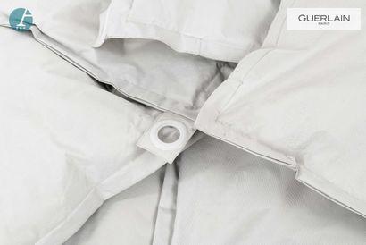 Lot de six coussins gris carrés  L : 70cm  Tâches - manque un oeillet