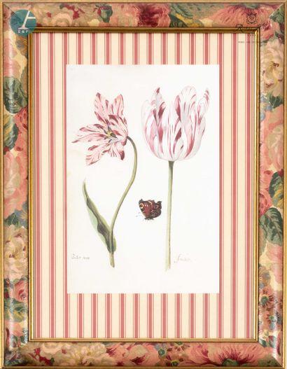 Lot de huit pièces encadrées sur le thème de fleurs, fruits et papillons, gravures...