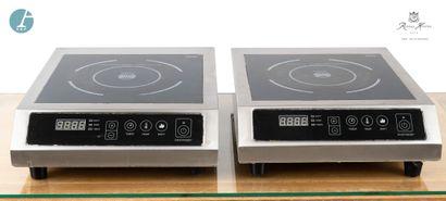 Deux plaques de cuisson à induction SCHOTT...