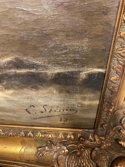 """E. STENING (?) (XIXe-XX) """"Vagues"""" Huile sur toile signée en bas à droite et datée..."""