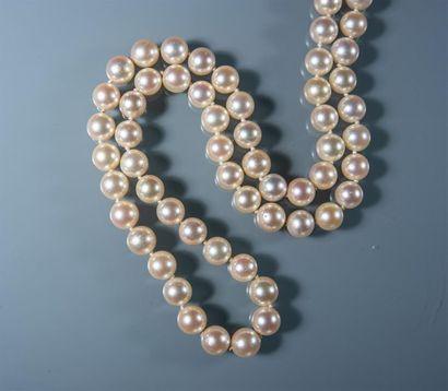 COLLIER CHOKER en perles de culture, fermoir...