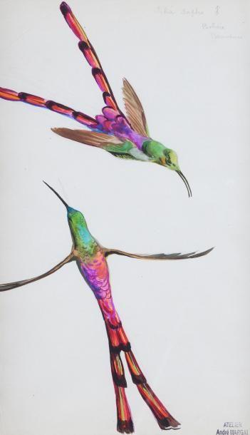 André MARGAT (1903-1997)  « Deux colibris...