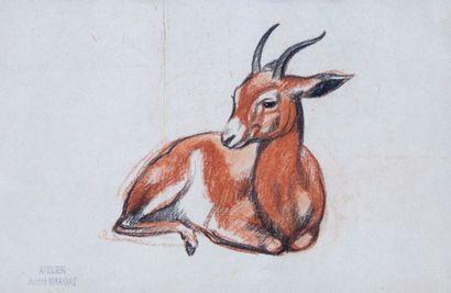 André MARGAT (1903-1997)  « Gazelle couchée...