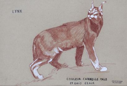 Georges FELDKIRCHNER (1885-1952)  « Lynx...