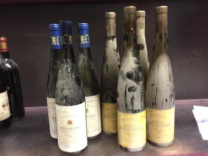 7 bouteilles de Riesling: 3 Altenberg, 2...