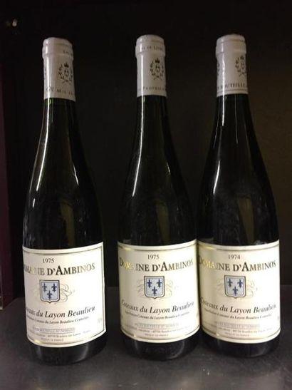 3 bouteilles Domaine d'Ambinos, coteaux du...