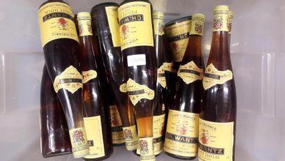 15 bts de Pinot noir d'Alsace SC. Wantz
