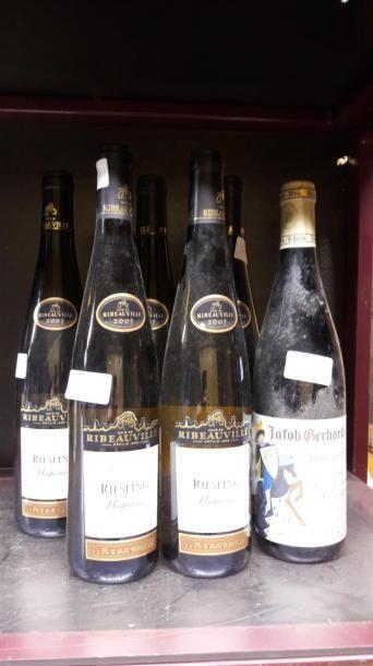 6 bts RIESLING: 5 Huguenau cuvée ribeuvillé...