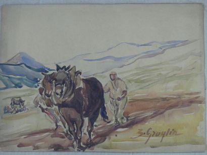 Zoé GRAGLIA (XIX-XX). Les chevaux en train de labourer